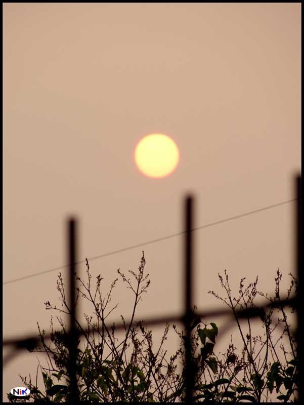 week33_2010.jpg