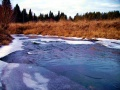 Река Коноваловка. Весна