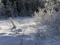 Зима 2