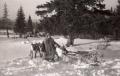 Североуральские манси с оленями