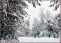 Зима ещё впереди