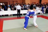 Победило спортивное мастерство (рис.1)